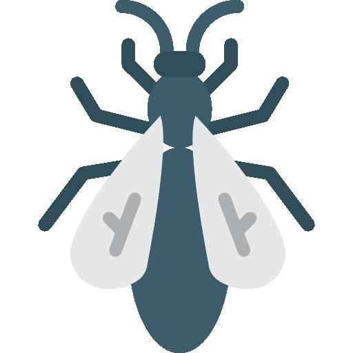 Imagen de mosca