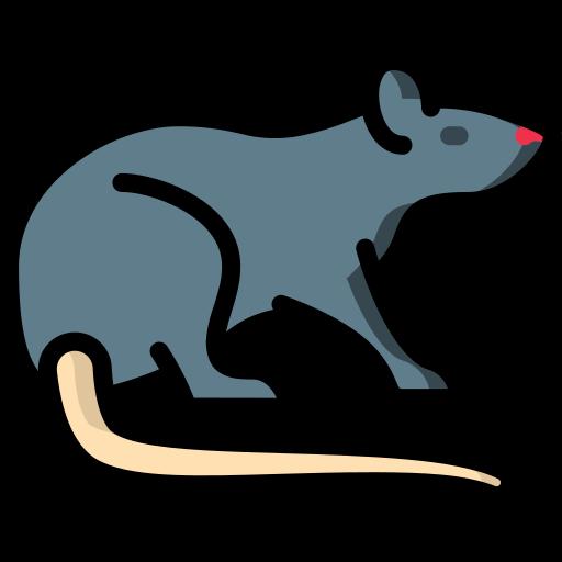 Imagen de rata